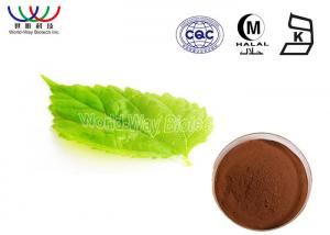 Quality Solvent Extraction Morus Alba Extract 1% 1 - Deoxynojirimycin Lower Blood Sugar for sale