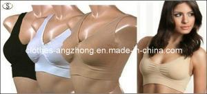 China High Quality Seamless Ladies Underwear Sport Bra on sale