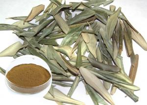 China Anti Inflammatory Natural Olive Leaf Extract Powder Reducing Bad Cholesterol on sale