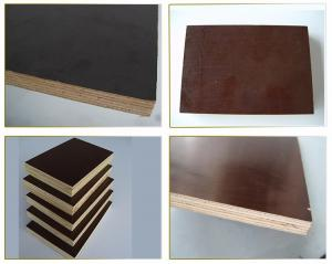 China Chinese golden supplier combi core 12mm film faced plywood price on sale