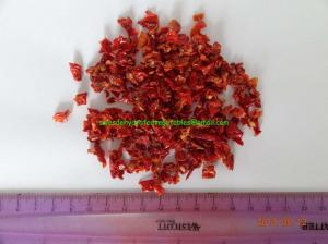 China 9x9mm Airing Dried Tomato Granules with High Quality on sale