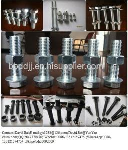 China Drywall screws/ F brad nail /Yard Nail/BOLT/screw/nut on sale