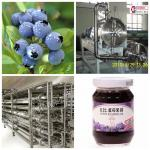 Blueberry Beverage Production Equipment SS304 Material Easy Operation