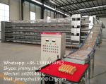 Automatic Control Commercial Layer Poultry Brooder Cages/ Egg Chicken Breeding Cages For Sale