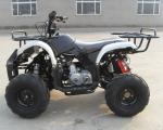 125CC,Air cooled, 4-stroke, single cylinder, chain drive,Max horsepower:8.0/9500Kw(r/min)