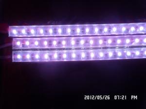 China Waterproof led light bar 12V 1m with 60pcs 5050 SMD LEDS on sale