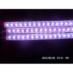China Waterproof led light bar 12V 1m with 60pcs 5050 SMD LEDS on sale