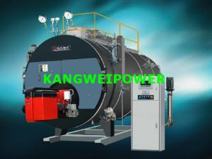 China Industry Biomass Coal Fired Steam Boilers Double Drum Chain Grate Combustion on sale
