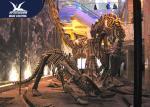Durable Fiberglass Life Size Dinosaur Skeleton / Dinosaur Fossil For Kids Educational