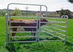 Heavy Duty Galvanized Corral Yard Cattle Panel / 40x70mm Bulk for Livestock