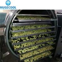 vegetables vacuum freeze dryer, vegetables vacuum freeze