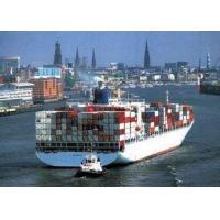 International Sea Freight Cargo Service Agent From Shenzhen To Miami, FL