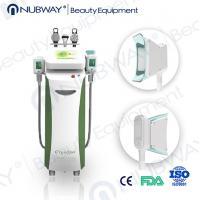 China cryolipolysis slimming machine cryolipolysis mchine cryolipolysis fat freezing on sale