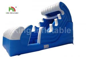 China PVC Tarpaulin Spray Blow Up Water Slide For Pool Customized Ocean Theme on sale