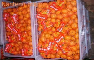 China Jiangxi Micro Elements Fresh Mandarin Oranges Contains Citrus Oils , Linalool , Neral on sale