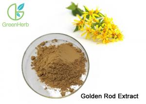 China Food Supplement Plant Extract Powder Golden Rod Extract Treat Internal Bleeding on sale