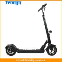 China CE FCC Approval Big Wheel Electric Kick Scooter Adult Electric Scooter Skateboard on sale