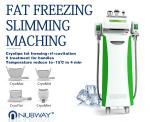 Non Surgical Cryolipolysis Slimming Machine / Cryo Weight Loss Equipment For Home Use