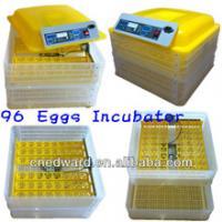High quality small 12V or 110V or 220V automatic mini chicken 96 eggs incubator