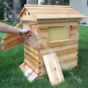 China 2018 Hive flow factory directly supply pine fir material automatic auto bee honey flow hive with reasonable price on sale