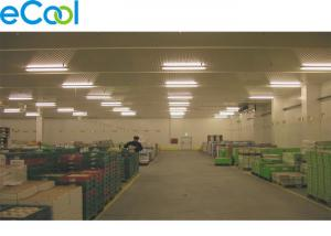 China 1000 Tons CA Cold Storage Of Fruits And Vegetables Free of Shelves on sale
