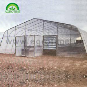 China 2019 Agricultural hot  galvanized steel pipe singe-tunnel greenhouse with plastic film for sale on sale