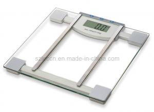China Body Fat Scale (SH-6068) on sale