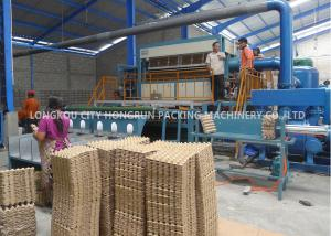 China Fully Automatic Chicken Farm Pulp Egg Tray Machine With Multilayer Drying Line on sale