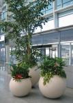 2019 Factory direct sales light weight high strength white outdoor round fiberglass ball flower pots for home