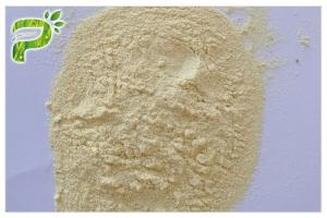 China Milk Thistle Plant Extract Powder Silybin CAS No. 22888 70 6 Preventing Liver Disorder on sale