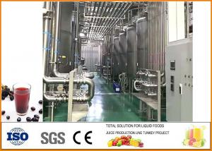 China Blackcurrant fruit vinegar production processing line on sale