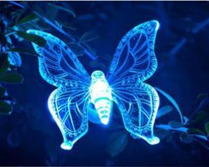 ... Quality Solar Decorative Garden Stakes, Garden Plastic Butterflies,  Solar Flying Animal For Sale