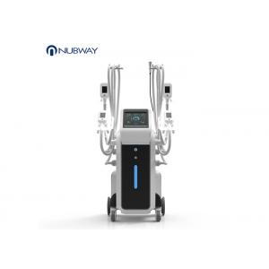 Unique 4 Handles Work Together Cryolipolysis Slimming Machine Fat Freezing Cryo