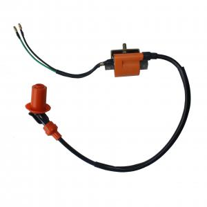 China 125cc ATV Four Wheelers Parts Ignition Coil Lightweight High Performance on sale