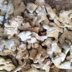 Whole Dried Ginger Root New Crop Grade A Carton Packing No Additives