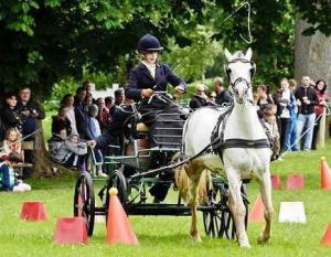 China PVC Anti-Collision UK Stud Farm Horse Ranch Cone on sale