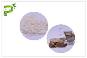 China Anti Caries Magnolia Bark Antibacterial Plant Extract Powder For Tooth Paste on sale