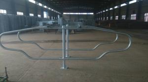 China New Style Cattle Yard Panels Dairy Cow Stalls Excellent Anti Corrosion on sale