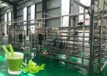 Safety Vegetable Processing Line Stable Performance Celery Processing Equipment