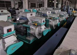 China Biomass Wood Fuel Pellet Making Machine Horizontal Waste Rice Husk on sale