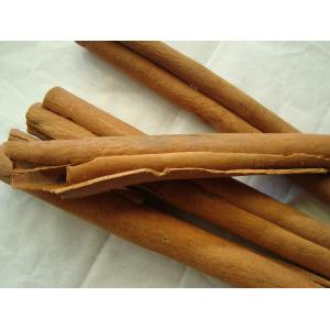 China Wholesale Dried Cinnamon Cassia material spice from China on sale