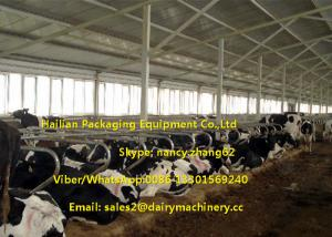 Quality Hot Dip Galvanizing Tie Free Stall Dairy Barns Cow Farm Equipment Parts For Sale