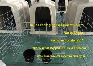 China Pequeños aparadores plásticos del becerro de la granja lechera para los becerros con la cerca de alambre de acero galvanizada de la inmersión caliente on sale