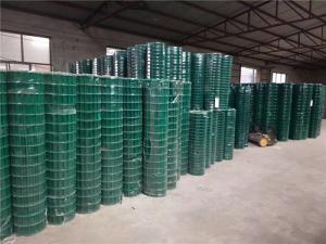 China Green PVC Coated Wire Mesh Fencing Panels / Rolls JDX12-8 For Tree Guards on sale