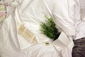 China 健康の柔らかい耐久の絹の夏の羽毛布団の差込み、100%のMicrofibreの生地の貝のキルト on sale