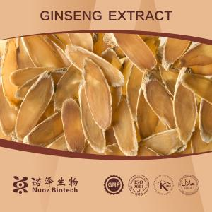 China 2014 ginseng buyers best choice for ginseng extract powder on sale