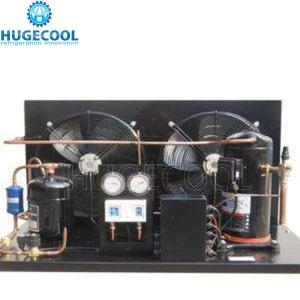 China Bitzer Cold Room Condensing Unit Anticorrosive Shell With Compact Structure on sale