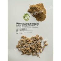 Traditonal Chinese Medicine Extract, Codonopsis Pilosula Extract 10:1, ginseng-like, enhance immunity,  chronic fatigue