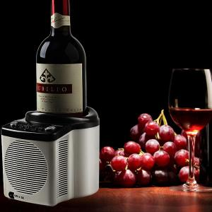 China Portable Electric Wine Cooler Single Bottle For Make Sour Cheese on sale
