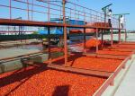 High Efficiency Tomato Processing Line / Tomato Sauce Production Line